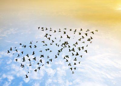 Leitlinien für Führung und Zusammenarbeit